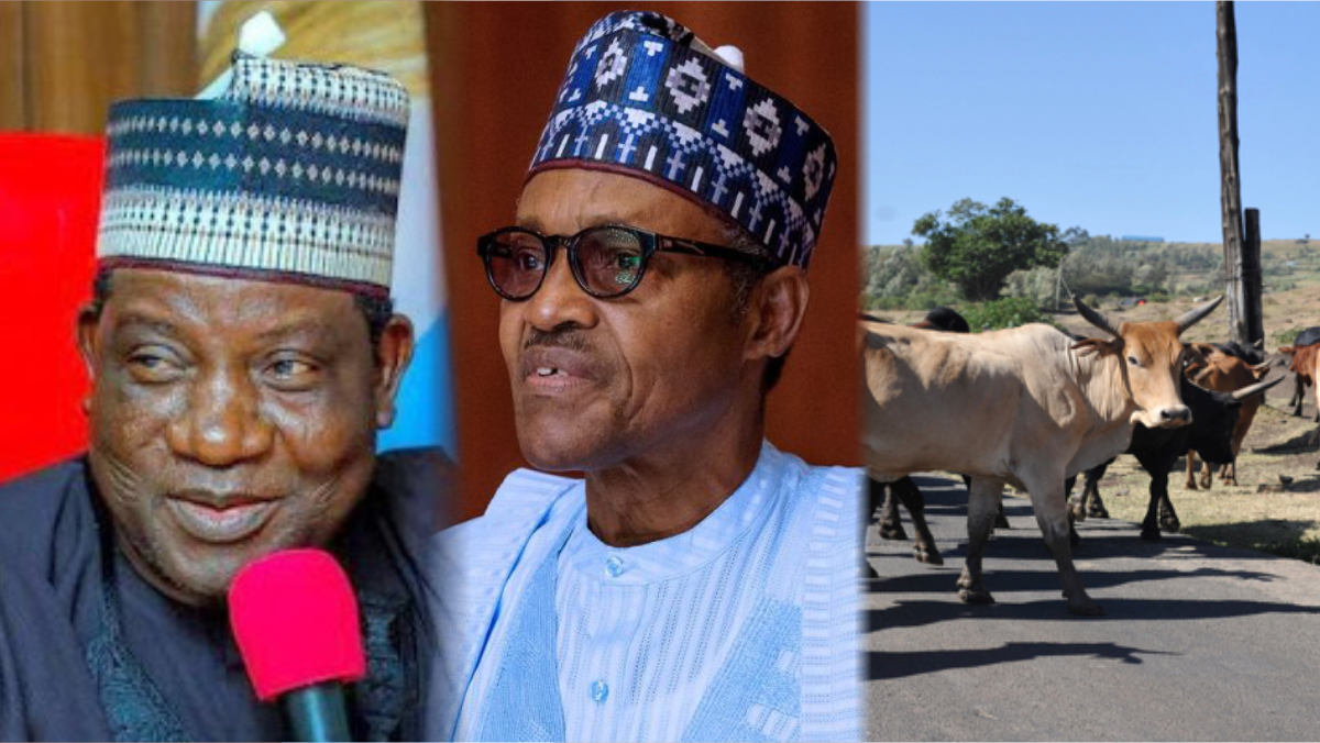 A composite of Chairman, Northern Governors' Forum, Simon Lalong, President Muhammadu Buhari and Cattles crossing road used to illustrate the story