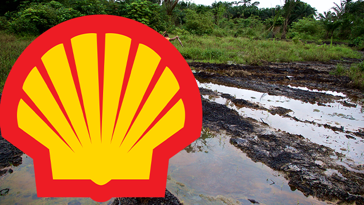 Shell and Oil